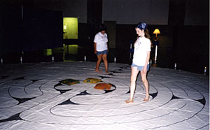 indoorcanvaslabyrinth.jpg