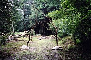 meditationgarden.jpg